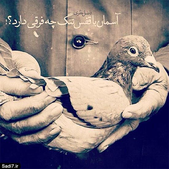 عکس نوشته و جملکس های رمانتیک بهمن 94