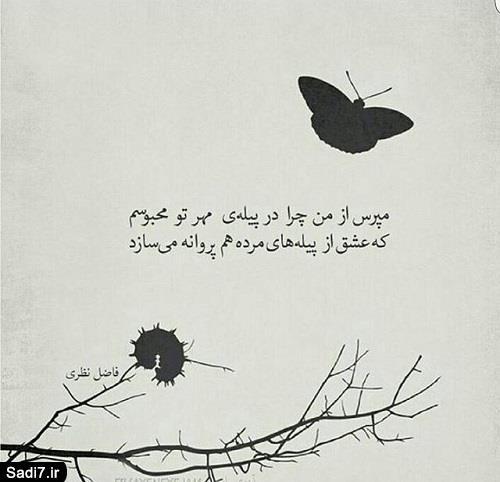 مجموعه ای از شعر نوشته های عارفانه